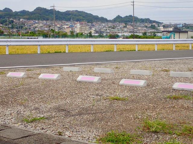 道路に面した北側の4台分が当院の駐車場です。 ピンクのテープが目印です。
